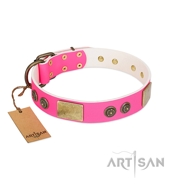 Adjustable full grain leather dog collar for walking