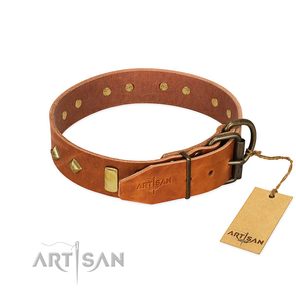 Comfy wearing genuine leather dog collar with top notch studs