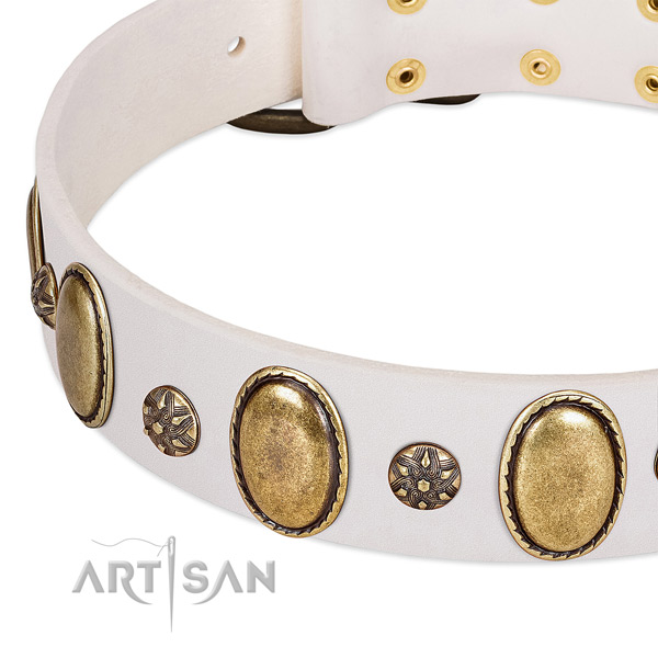 Everyday use soft to touch leather dog collar with studs
