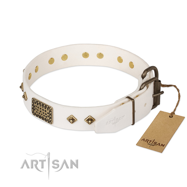 Full grain leather dog collar with reliable hardware and studs