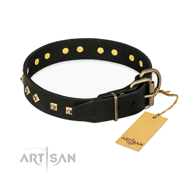 Corrosion proof traditional buckle on full grain natural leather collar for walking your four-legged friend