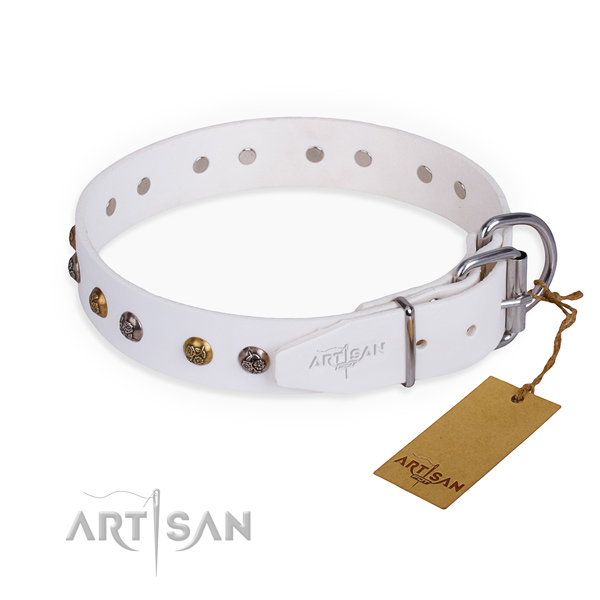 Full grain leather dog collar with stylish design durable studs
