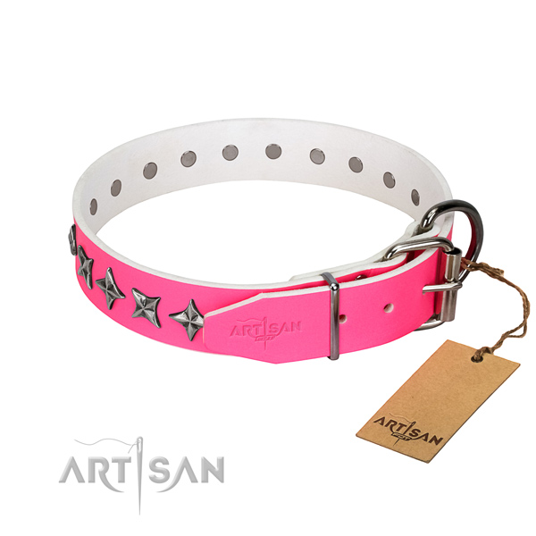 High quality leather dog collar with designer studs