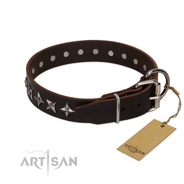 Walking embellished dog collar of top notch leather