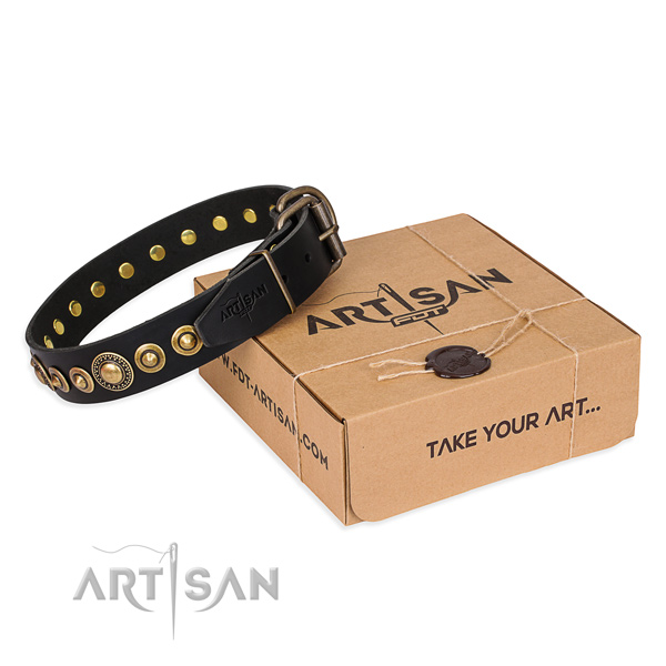 Top notch full grain leather dog collar made for fancy walking