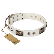 """Terrific Beauty"" FDT Artisan Beguiling White Leather Bullmastiff Collar"