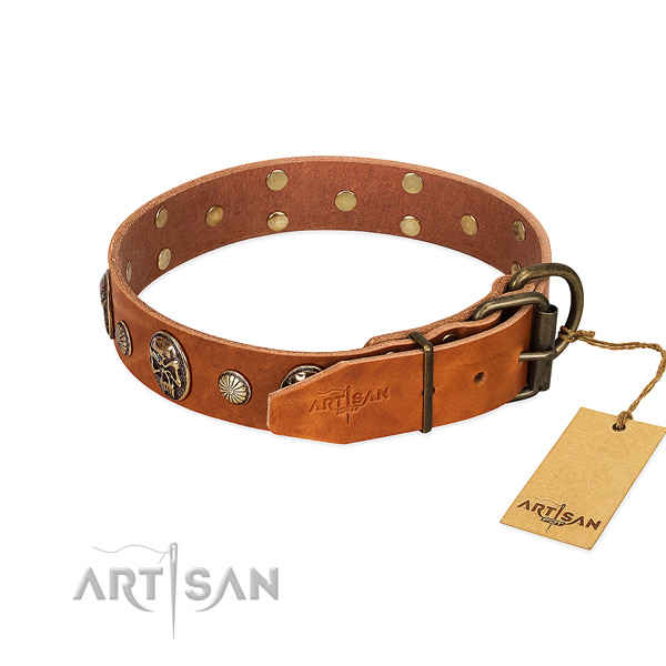 Rust resistant D-ring on genuine leather collar for stylish walking your doggie