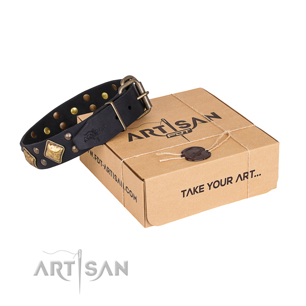 Handy use dog collar with Designer durable embellishments