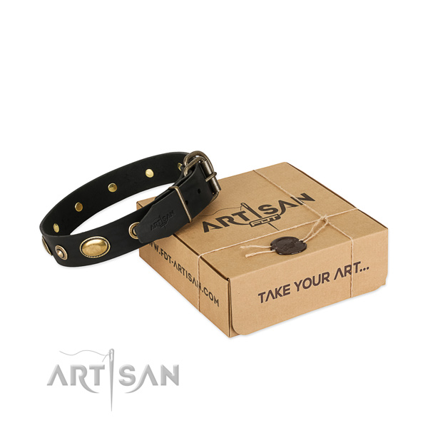 Reliable adornments on leather dog collar for your pet