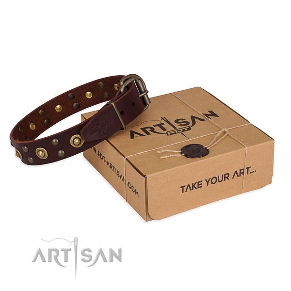 Rust resistant traditional buckle on leather collar for your attractive dog