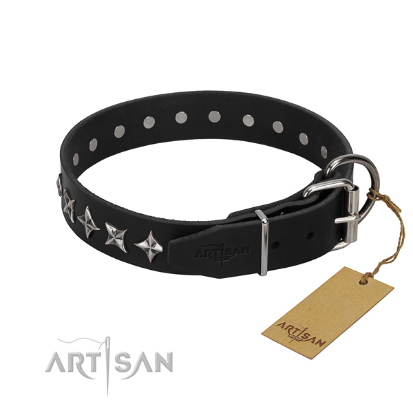 Everyday use embellished dog collar of top quality leather