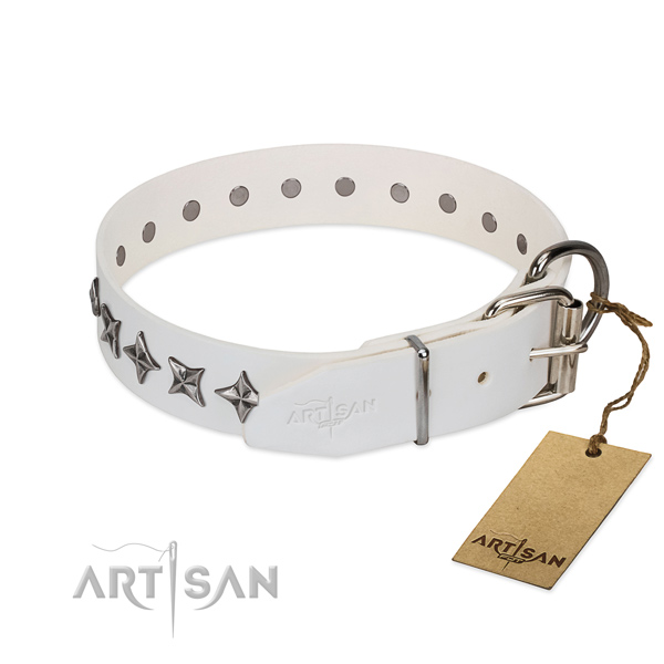 Walking adorned dog collar of high quality full grain leather