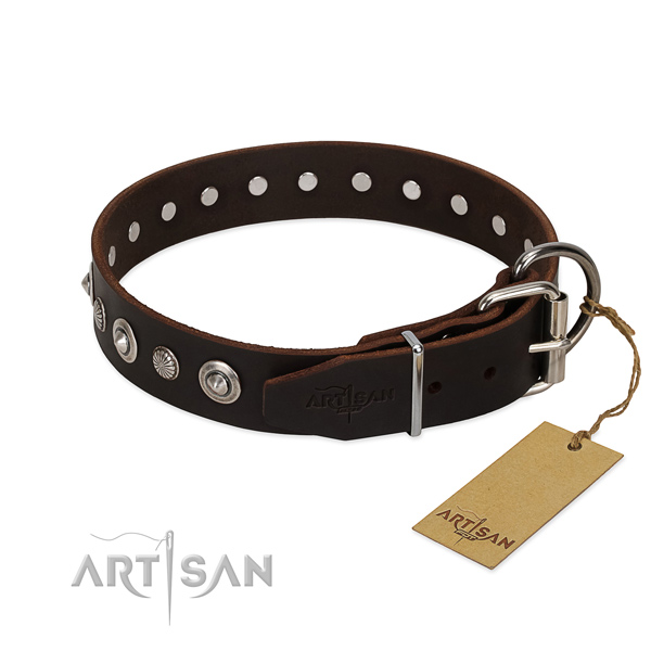 Strong leather dog collar with incredible decorations