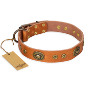 """Dandy Pet"" FDT Artisan Handcrafted Tan Leather Bullmastiff Collar"