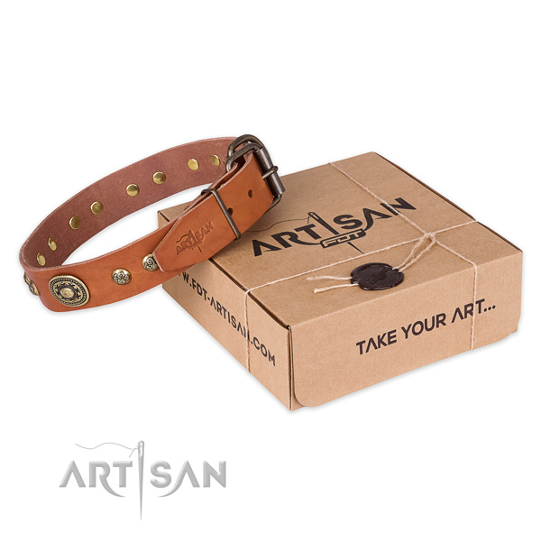 Rust-proof buckle on full grain genuine leather dog collar for handy use