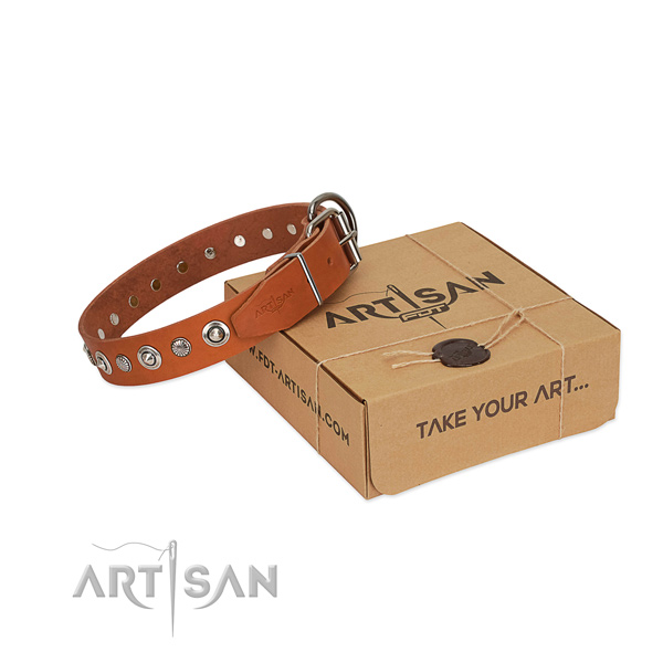 Top notch full grain genuine leather dog collar with top notch adornments