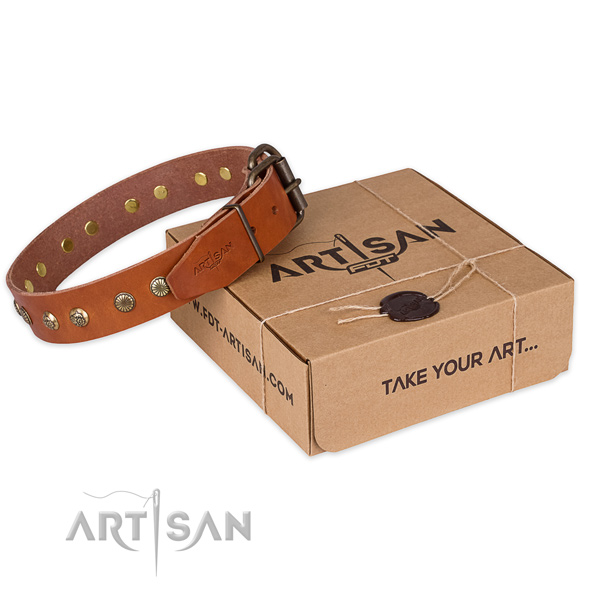 Durable fittings on full grain natural leather collar for your stylish doggie