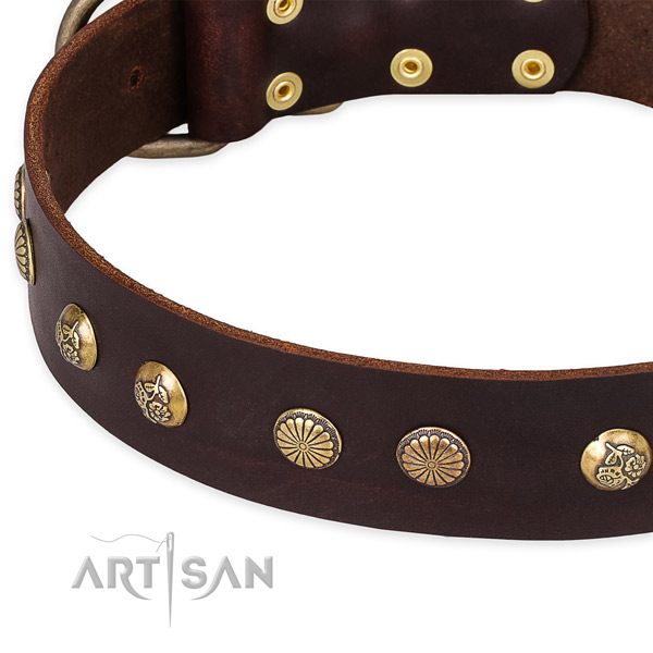 Full grain natural leather collar with rust-proof D-ring for your beautiful dog
