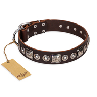 """Pierian spring"" FDT Artisan Brown Leather Bullmastiff Collar with Silvery Decorations"