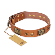 """Cosmic Traveller"" FDT Artisan Adorned Leather Bullmastiff Collar with Old Bronze-Plated Stars and Plates"