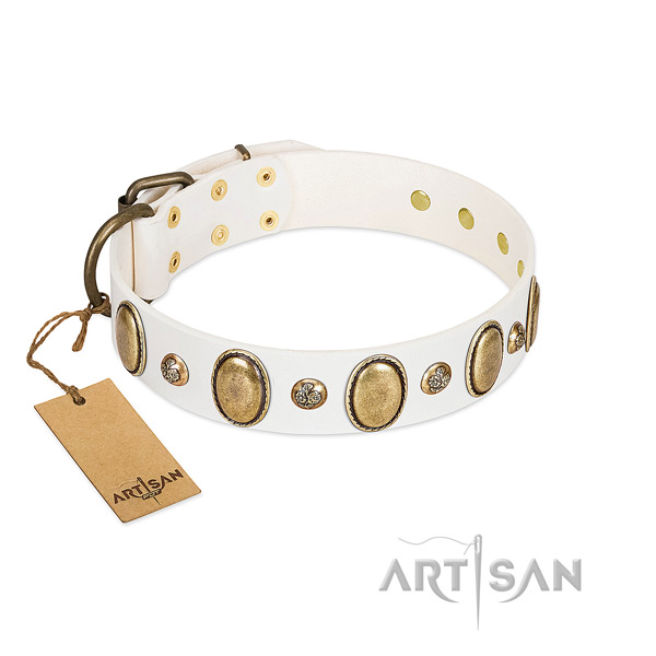 Leather dog collar of best quality material with unique embellishments