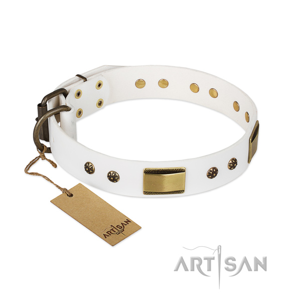 Embellished full grain natural leather collar for your canine