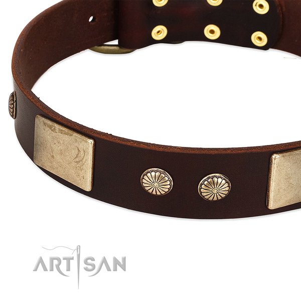 Durable decorations on genuine leather dog collar for your pet