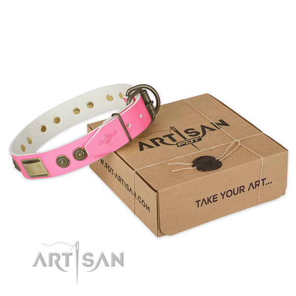 Corrosion proof traditional buckle on dog collar for walking