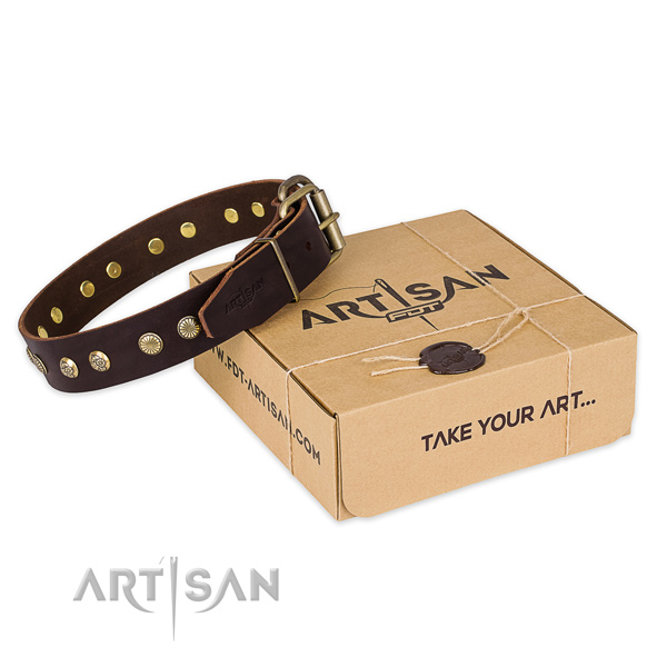 Rust-proof D-ring on full grain genuine leather collar for your lovely pet
