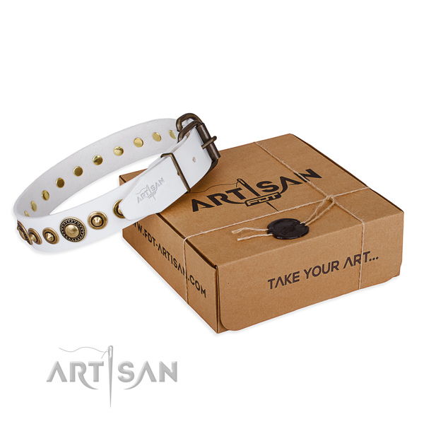 Durable leather dog collar handcrafted for comfortable wearing