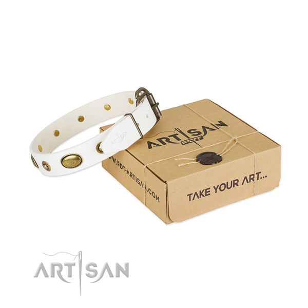 Adorned leather collar for your stylish canine