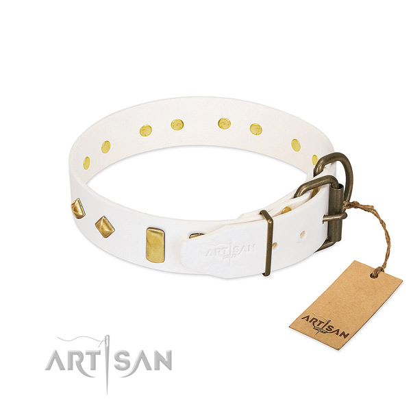 Top notch leather dog collar with rust-proof traditional buckle
