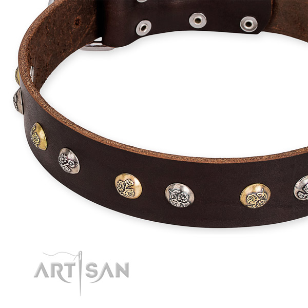 Genuine leather dog collar with impressive durable adornments