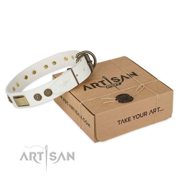 Corrosion proof fittings on natural genuine leather dog collar for everyday use