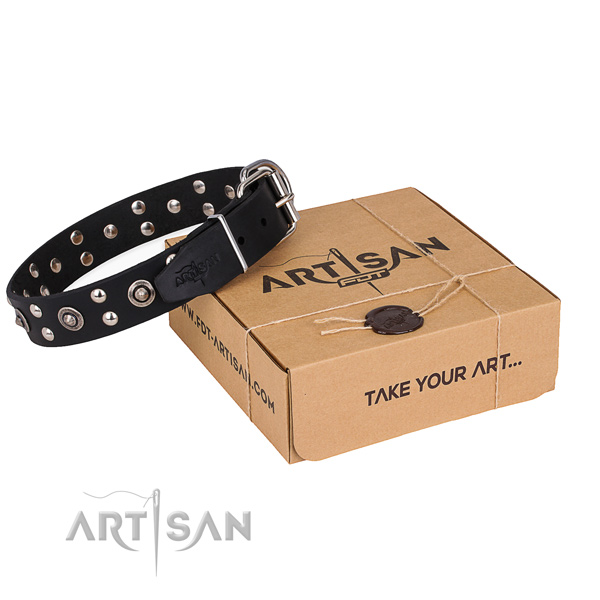 Basic training dog collar with Awesome rust resistant studs