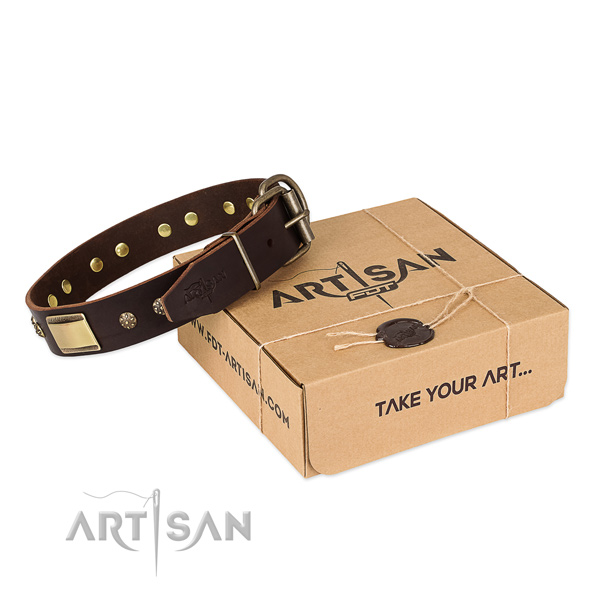 Remarkable leather collar for your impressive four-legged friend