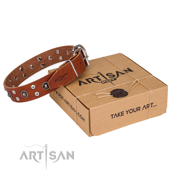 Rust resistant traditional buckle on full grain leather collar for your lovely dog