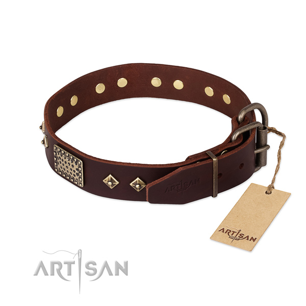 Leather dog collar with reliable buckle and studs