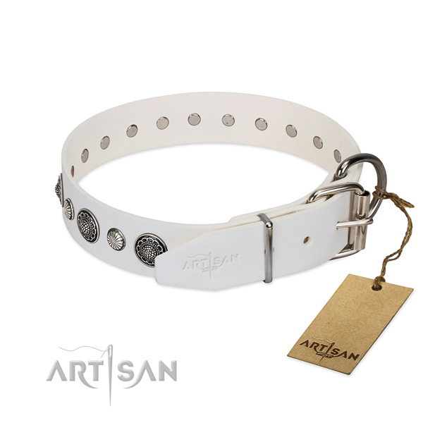 Quality full grain leather dog collar with corrosion proof hardware