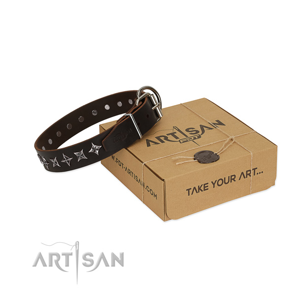 Fancy walking dog collar of reliable full grain leather with decorations
