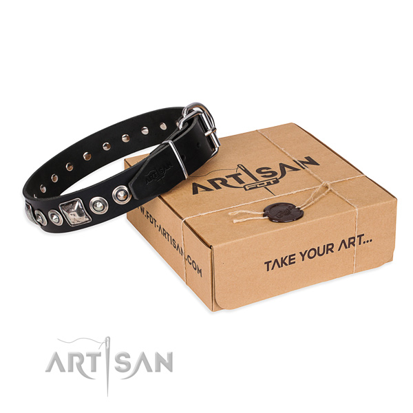 Full grain leather dog collar made of gentle to touch material with strong traditional buckle