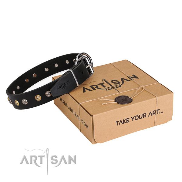 Strong genuine leather dog collar crafted for walking