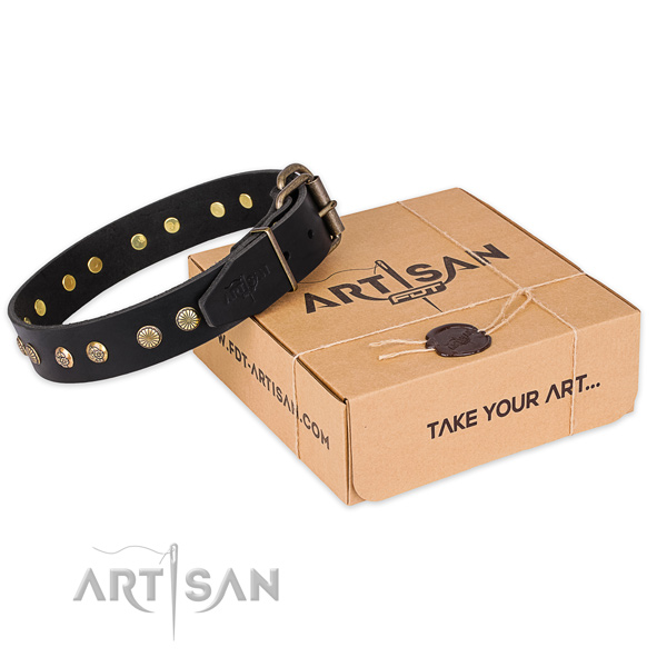 Strong traditional buckle on full grain genuine leather collar for your attractive dog