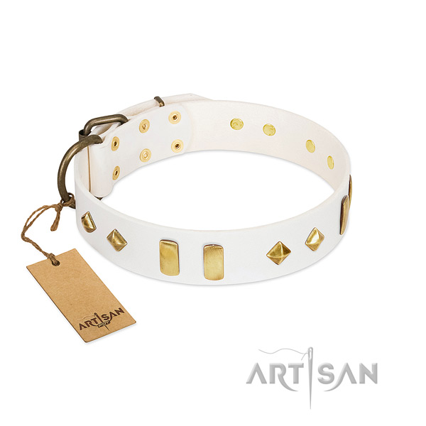 Easy wearing reliable full grain leather dog collar with embellishments