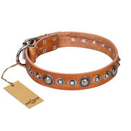"""Daily Chic"" FDT Artisan Tan Leather Bullmastiff Collar with Decorations"