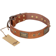 """Catchy Look"" FDT Artisan Decorated Tan Leather Bullmastiff Collar"