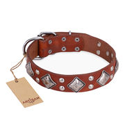 """Magic Squares"" FDT Artisan Tan Leather Bullmastiff Collar with Silver-like Decor"