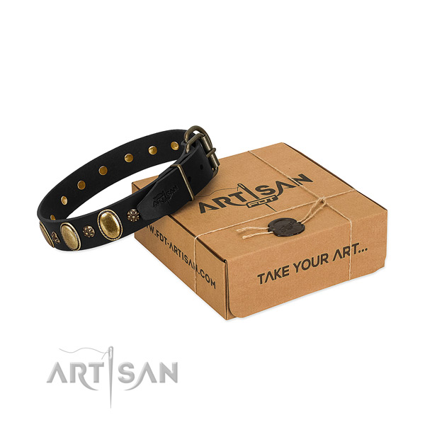 Daily use flexible full grain natural leather dog collar with adornments