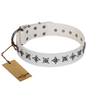 """Midnight Stars"" FDT Artisan Fashionable Leather Bullmastiff Collar with Old Silver-like Plated Decorations"