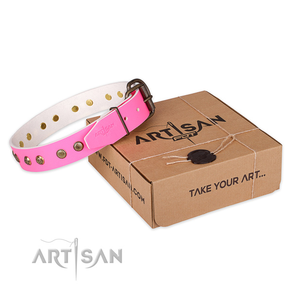 Corrosion resistant buckle on full grain natural leather collar for your beautiful canine